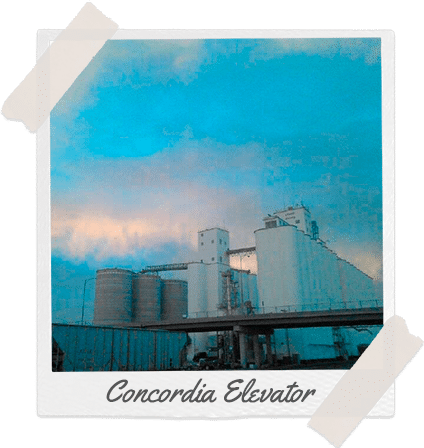 Cloud County Concordia Elevator location