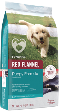 Exclusive Red Flannel Puppy